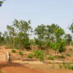 gurguripal-eco-park-midnapore
